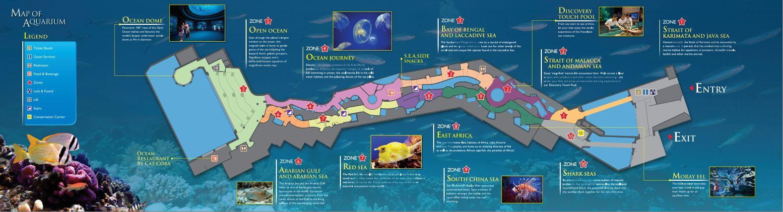 Photoblog the sea aquarium resorts world singapore taking on map gumiabroncs Image collections